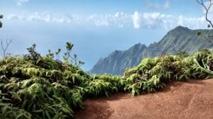Pu'u O Kila Lookout, Pihea Trail